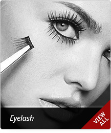Click to Shop Eyelash